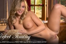 Ideal Timing – Zoey Taylor